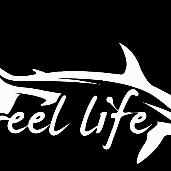 Brand-new Hammerhead Shark Decal - 11 inch - Always An Adventure IZ16